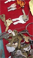 Large Unsorted Lot of Keys and Key Rings GM Auto