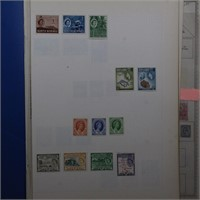 Great Britain & Area Collection on Pages