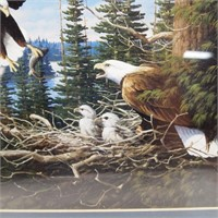 Eagle Feeding the Baby/Matted and Framed