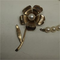 Jewelry Selection/Sarh Coventry