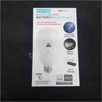 4-in-1 LED Bulb