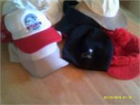 7 Various Hats
