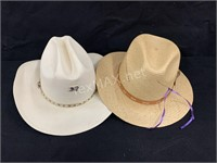 (6) Various Style Hats