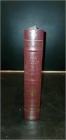 Vintage Illuminated Family Edition Holy Bible