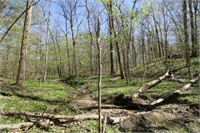 Fayette County IL - 40 wooded acres - Cabin - Pond