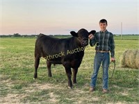 Richland County 4-H Foundation Youth Auction