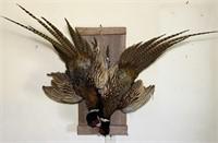 2 Pheasants Hanging on Wood, very neat looking