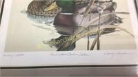 1981Texas Duck Stamp, Larry Hayden Print