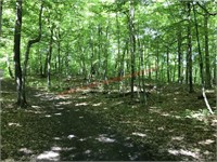 OTTER TAIL COUNTY LAND AUCTION Rossow