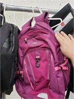 Pink High Sierra Backpack
