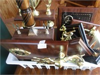 Trophy Selection