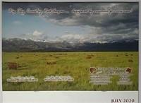 Montana Red Angus 2021 Calendar Ad Auction