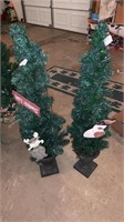 Small decorative trees
