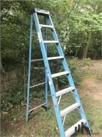 Werner 8 ft Ladder