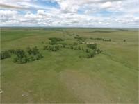 Tract 2- 2955+- acres