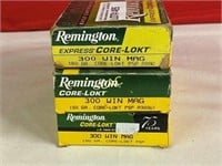 20rds Remington 300win