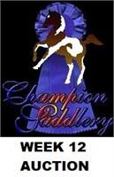 CHAMPION WEEK 12