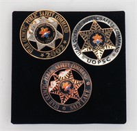 Collection of Commemorative Badges, Coins & Other Cool Stuff