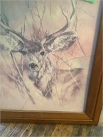 deer head pic, glass cracked