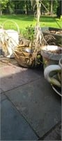 estate lot of plants and pots