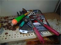 Garden Tools & Paint Pan