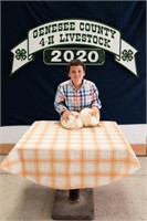 2020 Genesee County 4H Market Animal Auction