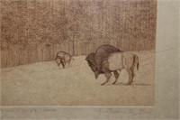 Etched Buffalo Signed Artwork