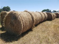 ONLINE HAY AUCTION  - EAST OF STURGIS SD
