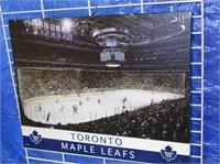 Toronto Maple Leaf Photo On Canvas