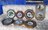 Collection Collector Plates