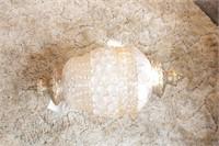 Retro Swag lamp project