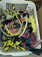 Assorted rope, bungee straps, ratchet straps