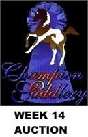 CHAMPION WEEK 14