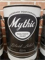Gallon Paint Lot