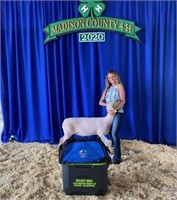 Madison County 10 Year Member 4 H Auction
