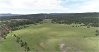 ABSOLUTE LAND AUCTION-MERRILL RANCH, HOT SPRINGS SD.