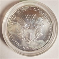 1 0Z SILVER AMERICAN EAGLE COLORIZED DOLLAR (29)
