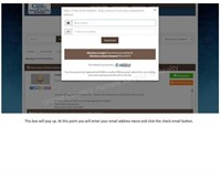 How to register and bid