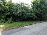 RE-Online Only 206 Bluff Rd. Harriman, TN