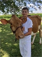 Connor Hartmen Dairy Project