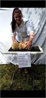 Lauren Gentry Rabbit Project