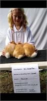 Nettie Graves Rabbit Project