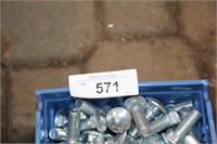 BIN OF CARRIAGE BOLTS