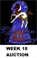 CHAMPION WEEK 15