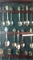 Lot of 38 collector spoons in big showcase