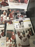 Red Wings Lot of Photos