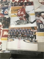Red Wings Photographs Lot
