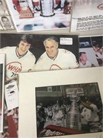 Red Wings Photos