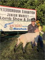 Peterborough Virtual Exhibition Steer & Lamb Show and Sale