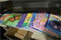 VARIOUS COLORING BOOKS & NATURE BOOKS